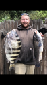 10/13 big sheepshead and tog